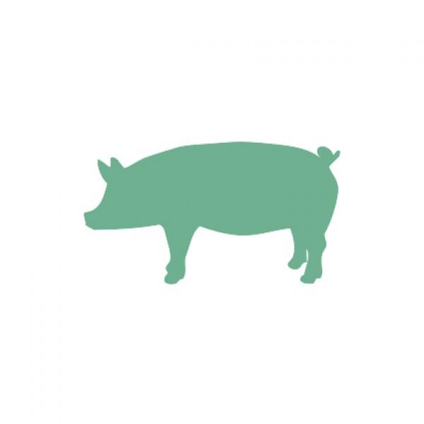 Porcino